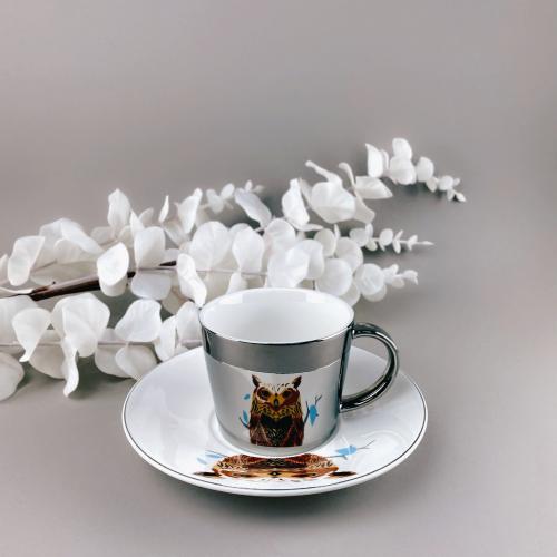 Зеркальная чашка с блюдцем сова (отражает рисунок) 250 мл Abra ab8030-89